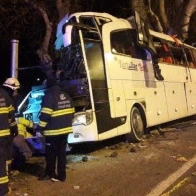 土耳其旅遊巴撼樹14死46傷