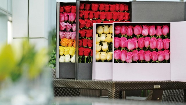 厄瓜多爾玫瑰花禮盒