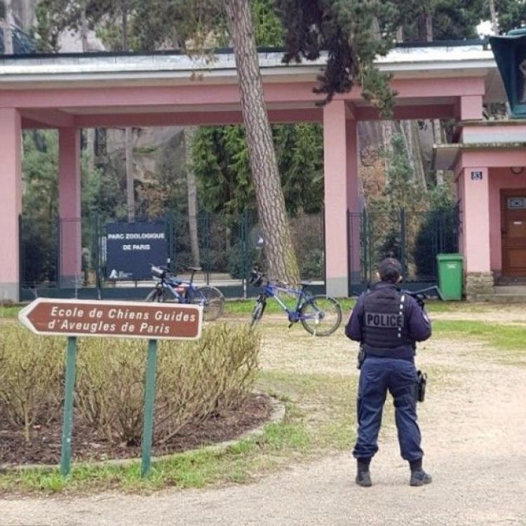 巴黎動物園緊急疏散乘客關園
