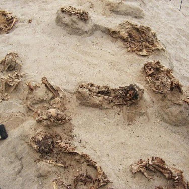 秘魯出土全球最大兒童獻祭墓地