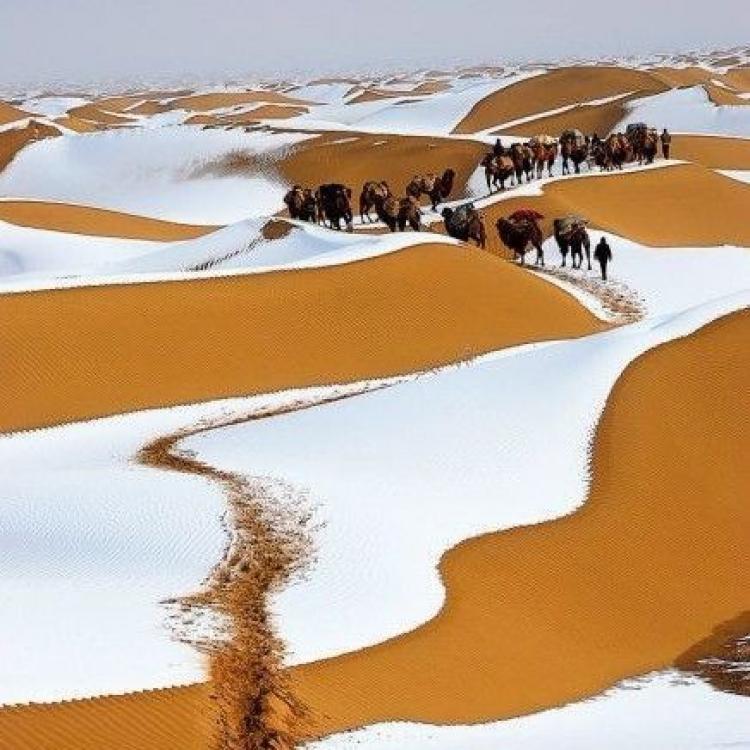 近半米積雪覆蓋黃沙