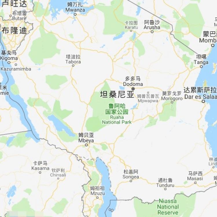 一中國公民於坦桑尼亞遭劫殺