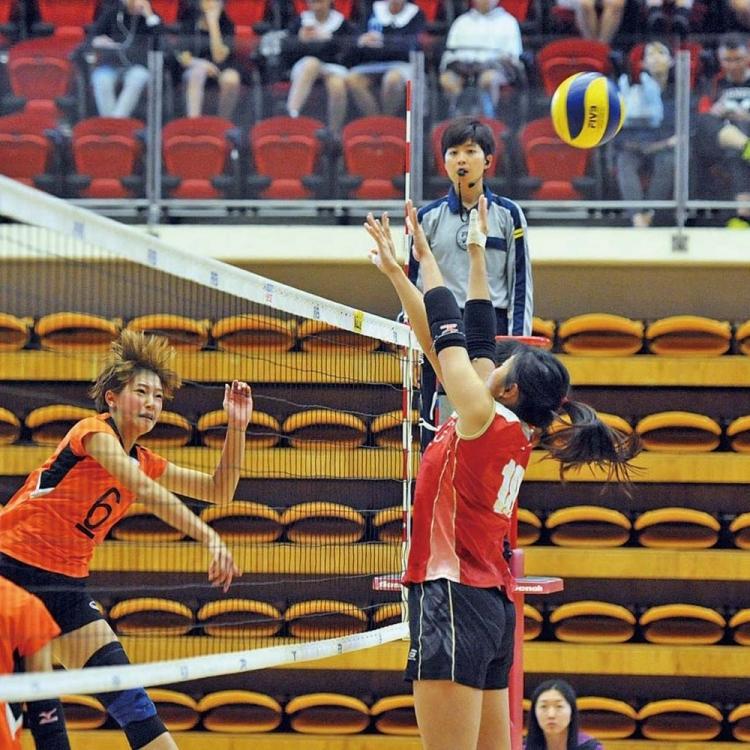 香港男女子隊排球埠際賽同奪冠