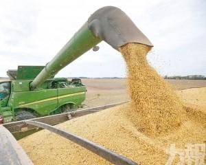 中國報復關稅續打農業牌