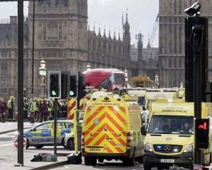 數人受傷 男司機被捕
