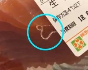 有片!日超市三文魚驚現「生猛」寄生蟲