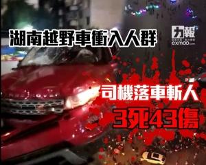 司機落車斬人3死43傷
