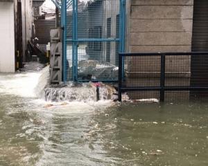 內港一帶水位急速上升!