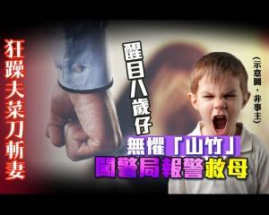 醒目8歲仔無懼「山竹」闖警局報警救母