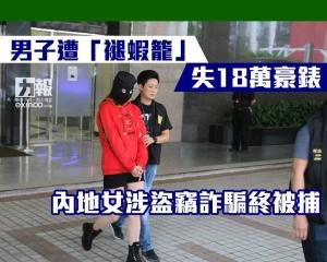 內地女涉盜竊詐騙終被捕