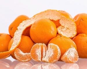 韓國回贈朝鮮200噸柑橘