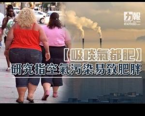 研究指空氣污染易致肥胖