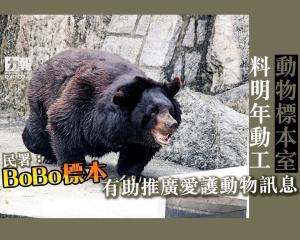 民署:BoBo標本有助推廣愛護動物訊息