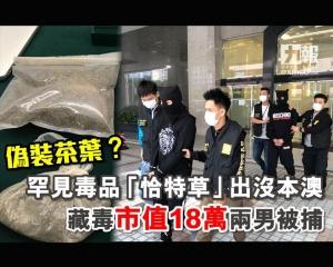 藏毒市值18萬兩男被捕