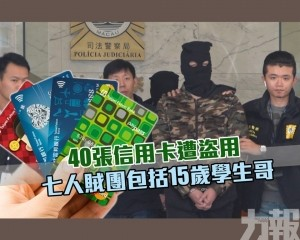 七人賊團包括15歲學生哥