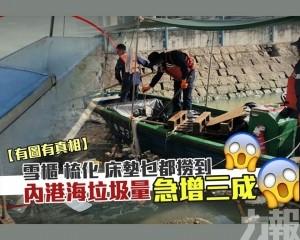 內港海垃圾量急增3成
