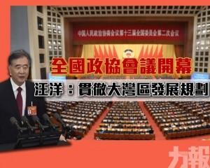 汪洋:貫徹大灣區發展規劃