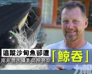 南非潛水攝影師險喪命