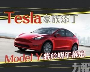 Model Y將於明年推出