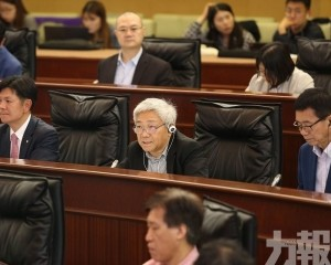 陳澤武:旅客多是應該的