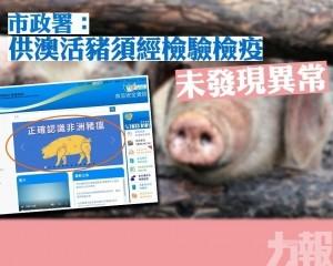 市政署:供澳活豬須經檢驗檢疫未發現異常