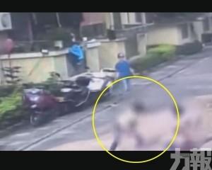 台山女用水管暴打3歲男童