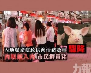 肉販蝕入肉市民捱貴豬