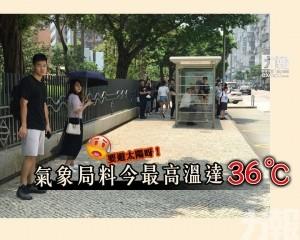 氣象局料今最高溫達36℃