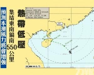 預測本澳風力將會增強