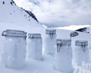 北極「落膠雪」