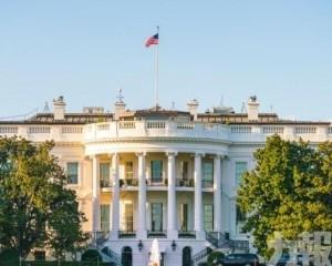 白宮否認:不在考慮之列