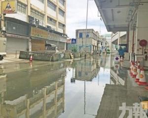 料周四至周六 內港一帶水浸