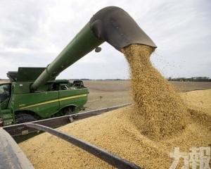 已就採購美國農產品進行詢價