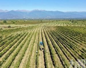 美農業部長:中方下周參觀美國農業區
