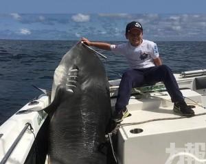 悉尼8歲男童破紀錄捕獲314公斤虎鯊