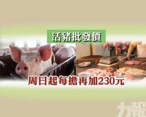 活豬批發價周日起每擔再加230元