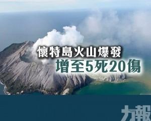 懷特島火山爆發增至5死20傷