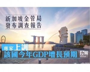 專家上調該國今年GDP增長預期