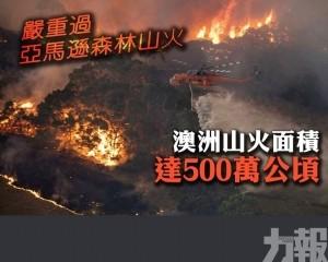 澳洲山火面積達500萬公頃