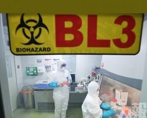 專家為何擔心武漢肺炎新型病毒?
