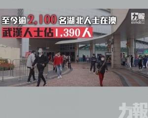 武漢人士佔1,390人