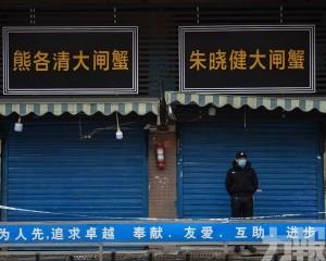 華南海鮮市場這個區域最毒
