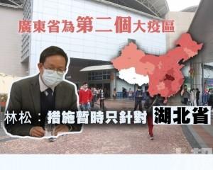 林松:措施暫時只針對湖北省