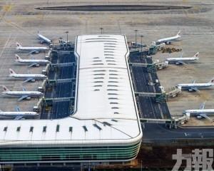 中國政府決定派包機接回