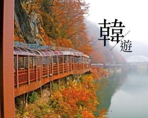秋冬風情畫!遊走忠清北道